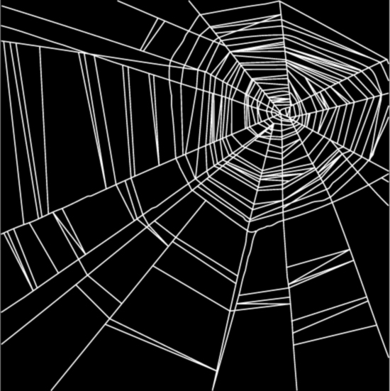 Spider web lace with the pattern vector material Free Vector / 4Vector